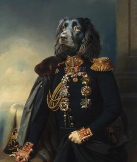 103-Portrait-de-teckel-en-officier-oeuvre-de-Daniel-Trammer-2.png
