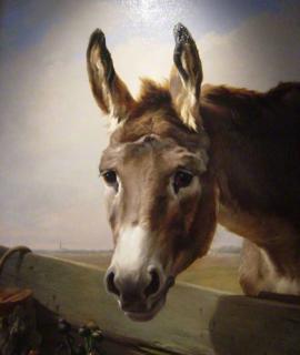 131-portrait-dane-oeuvre-Daniel-Trammer-60×90-Cm-2.png