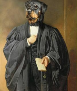 241-Portrait-de-Rottweiler-en-avocat-oeuvre-de-Daniel-Trammer-2.png
