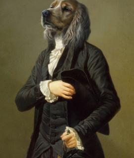 251-Portrait-de-tete-de-chien-golden-oeuvre-de-Daniel-Trammer-2.png